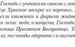 Ладанка матроны московской: что с ней делать, как носить