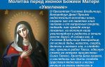 Князь владимир, креститель руси — краткая биография и правление