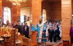 Храм воронеж святитель церковь официальный богослужение митрофановский