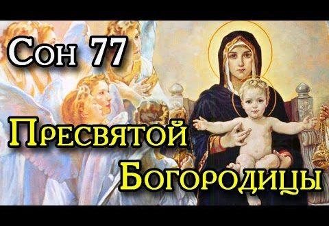Энциклопедия Тетерева: 89 снов Пресвятой Богородицы